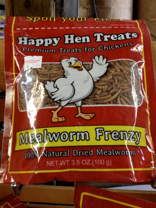 Got mealworms??