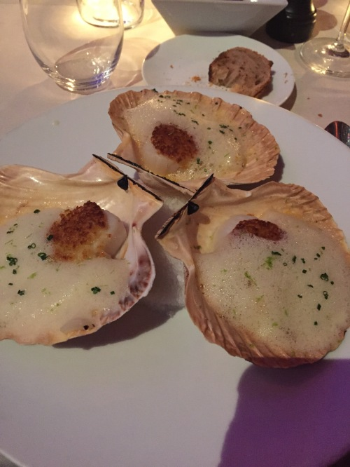 the BEST scallops